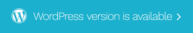 Wordpress Version